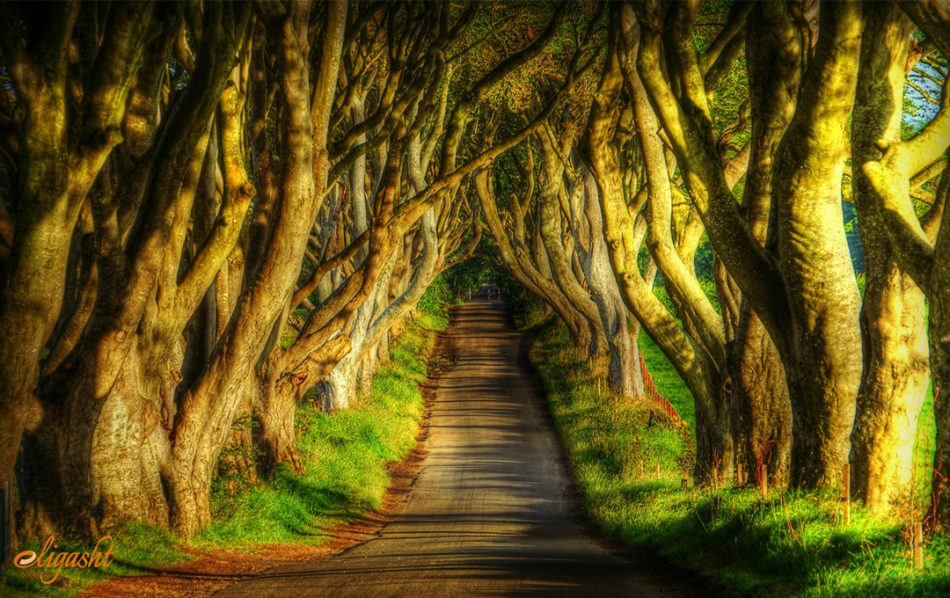 GOT locations in Ireland