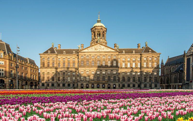 Tulip-Day-Festival