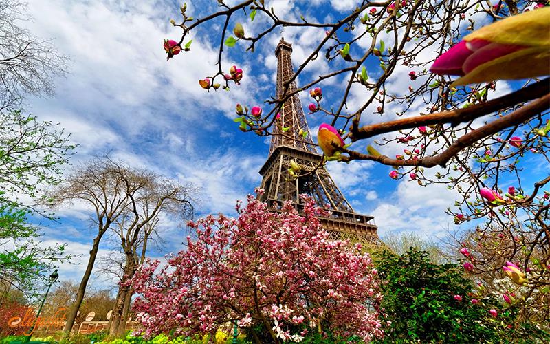 eiffel tower spring