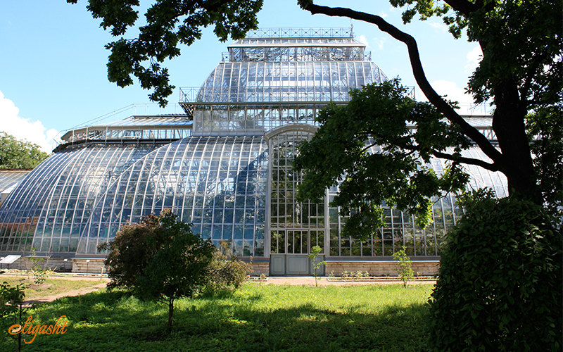 Botanical garden and the greenhouse